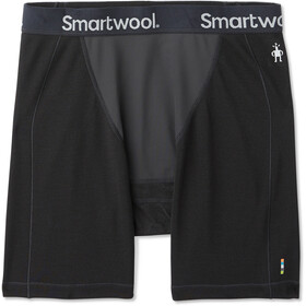 Smartwool Merino Sport 250 Boxer coupe-vent Homme, black